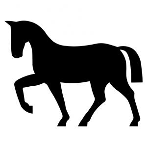horse-145929_960_720