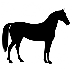 horse-156496_960_720