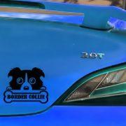 New-Border-Collie-Funny-Dog-Wall-Decal-Car-Sticker-Car-Body-Sticker-Windshield-Decal-DIY-Home.jpg_640x640